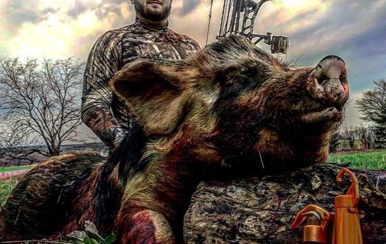 Use the best Hog Attractants by Heated Hunts to increase your success while hog hunting.
